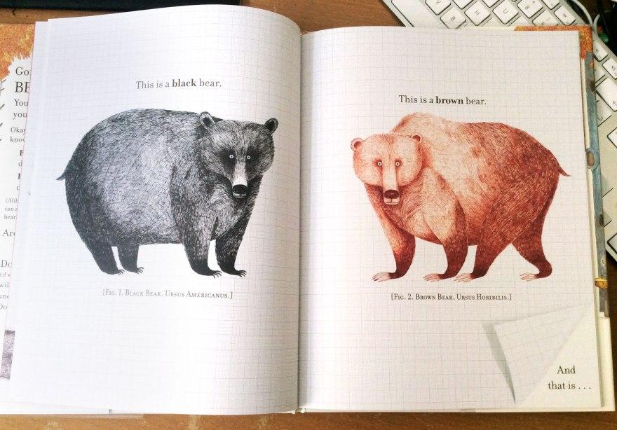 bearspot_inn3